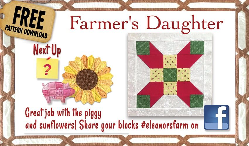 Quilt in a Day - Fun on the Farm | 1 country | Quilt in a