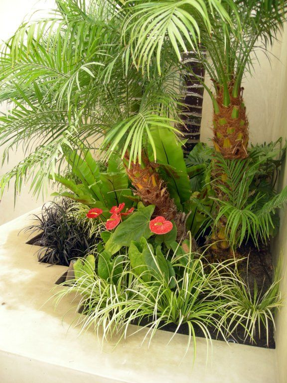 Tropical Gardens Are All About Dense Layering, Bold Forms, Variegated  Foliage, And Isolated Bursts Of Exotic Flower Color.