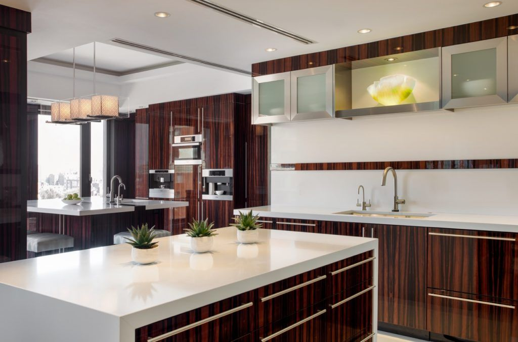 This Kitchen Is Outfitted In Macassar Ebony Cabinets With Stainless Steel Trim Builder Fbn 2020 Kitchen Design Popular Kitchen Designs Kitchen Design Trends