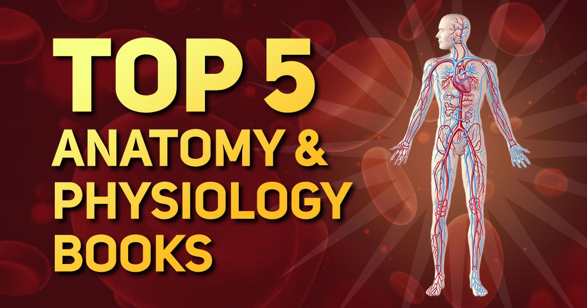 Best Top 5 Anatomy and Physiology Books for Medical ...