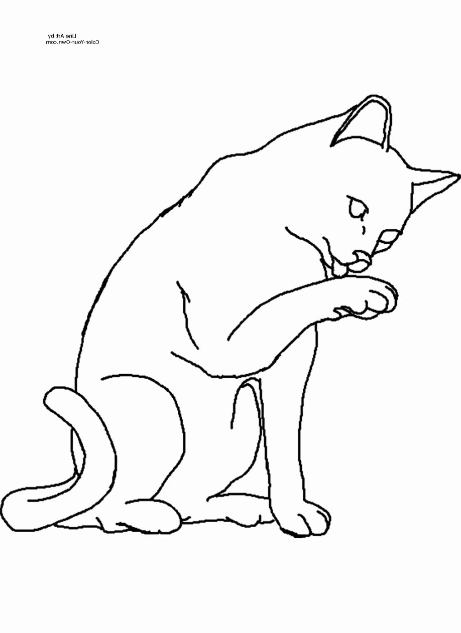 - Coloring Book : Warrior Cat Coloring Pages Make Your Own For Kids
