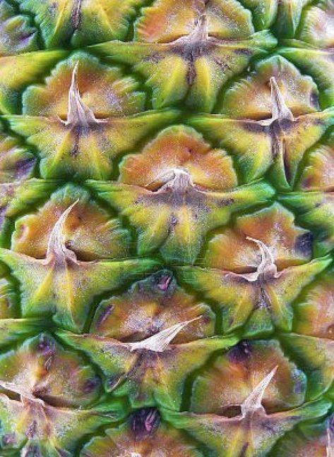 (2016-05) Ananas