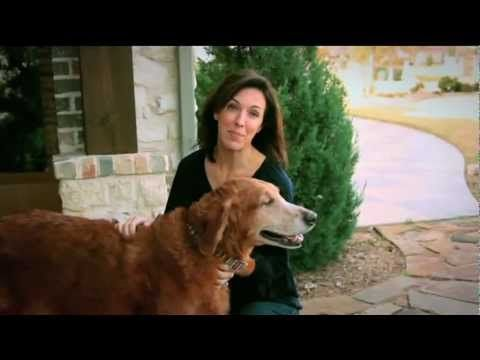 In The Park Cities Pet Sitting Commercial They Talk About The