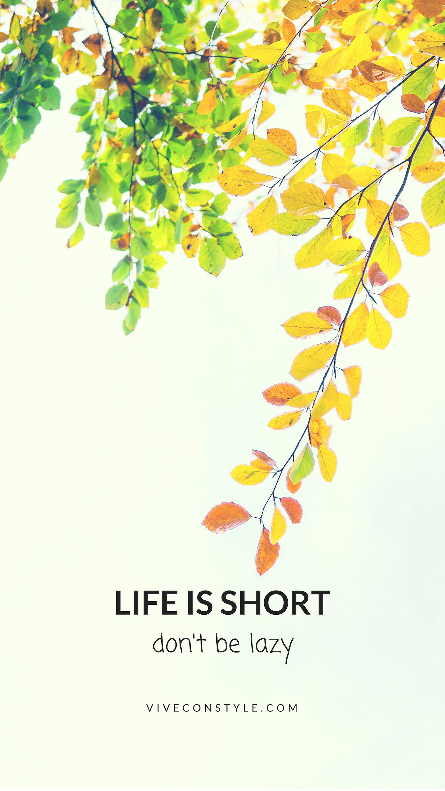 Life Is Short Don T Be Lazy Quote Mobile Wallpaper Vive Con Style Inspirational Wallpapers Cute Mobile Wallpapers Wallpaper