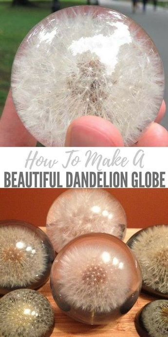 How To Make a Beautiful Dandelion Paperweight Globe #diyandcrafts