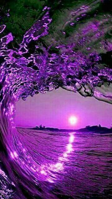 Beautiful Purple Nature Purple Trees Beautiful Nature Wallpaper Purple Wallpaper