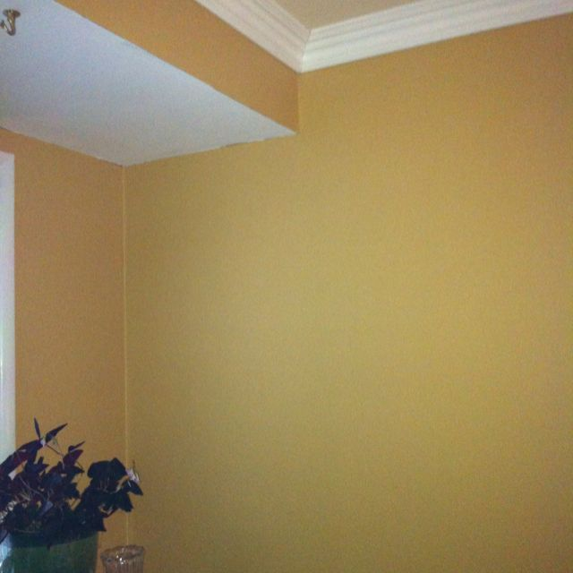 Benjamin Moore Aganthus Green: Benjamin Moore Dark Beige On The Walls And Durango Dust On