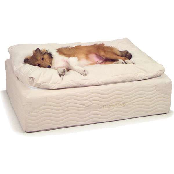 Sss Petcare Pillow Top Coil Spring Bed Orthopedic Dog Beds Photo Cool Dog Beds Orthopedic Dog Bed Diy Dog Bed