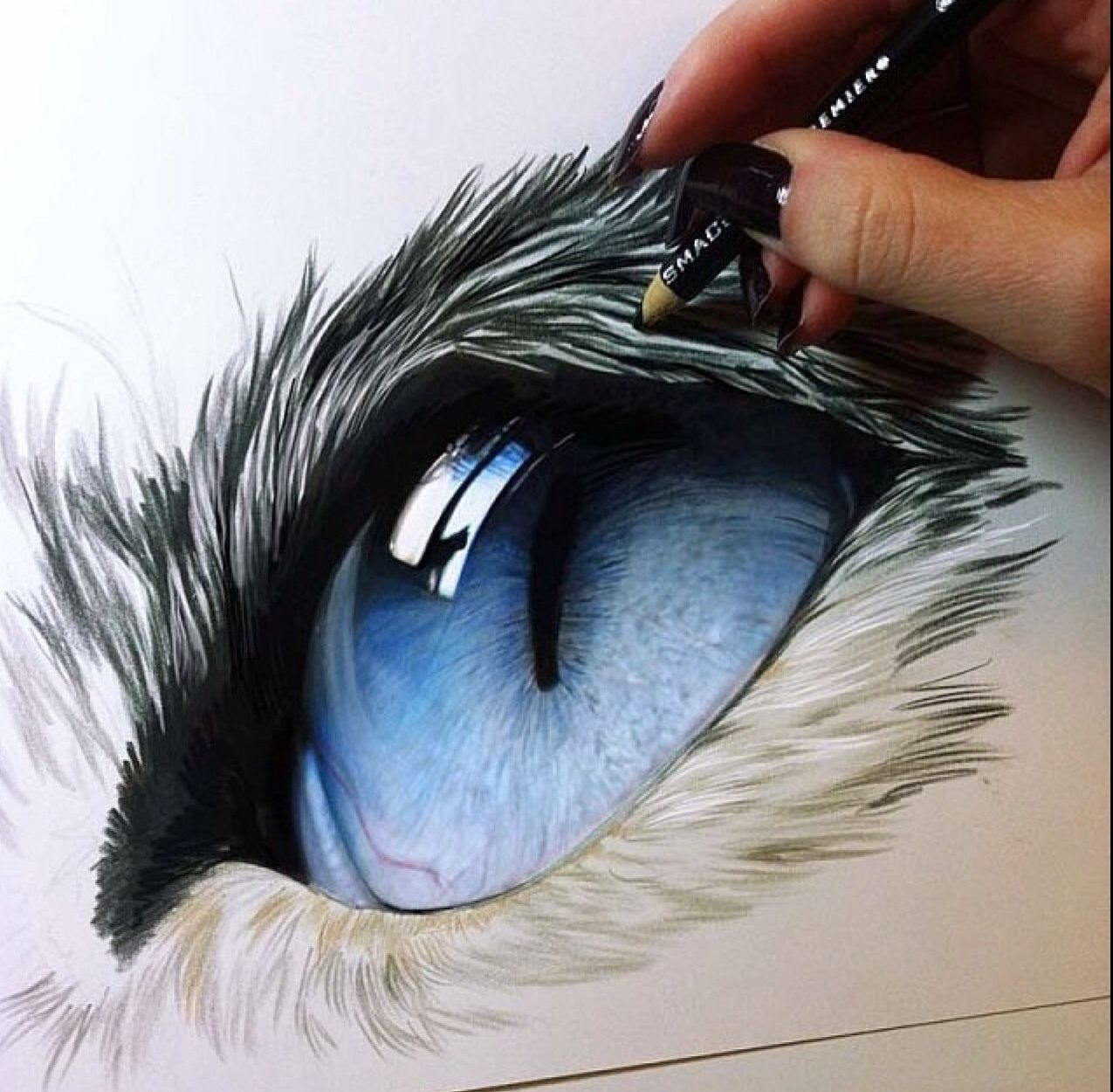 Kelly Lahar With Images Color Pencil Drawing Color Pencil Art