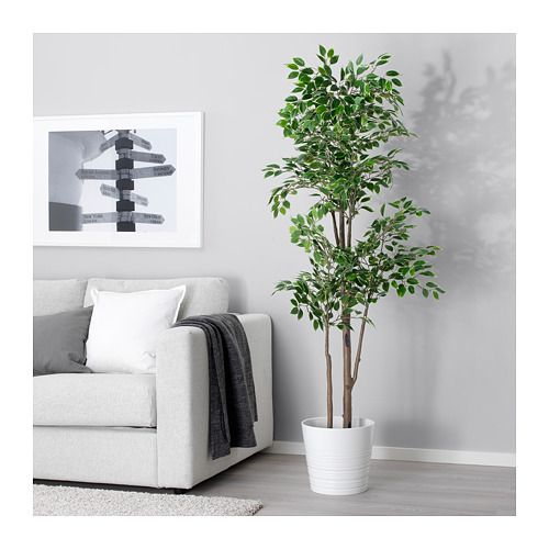 Fejka Artificial Potted Plant Weeping Fig Ikea Cheap Artificial Plants Plant Decor Indoor Artificial Potted Plants
