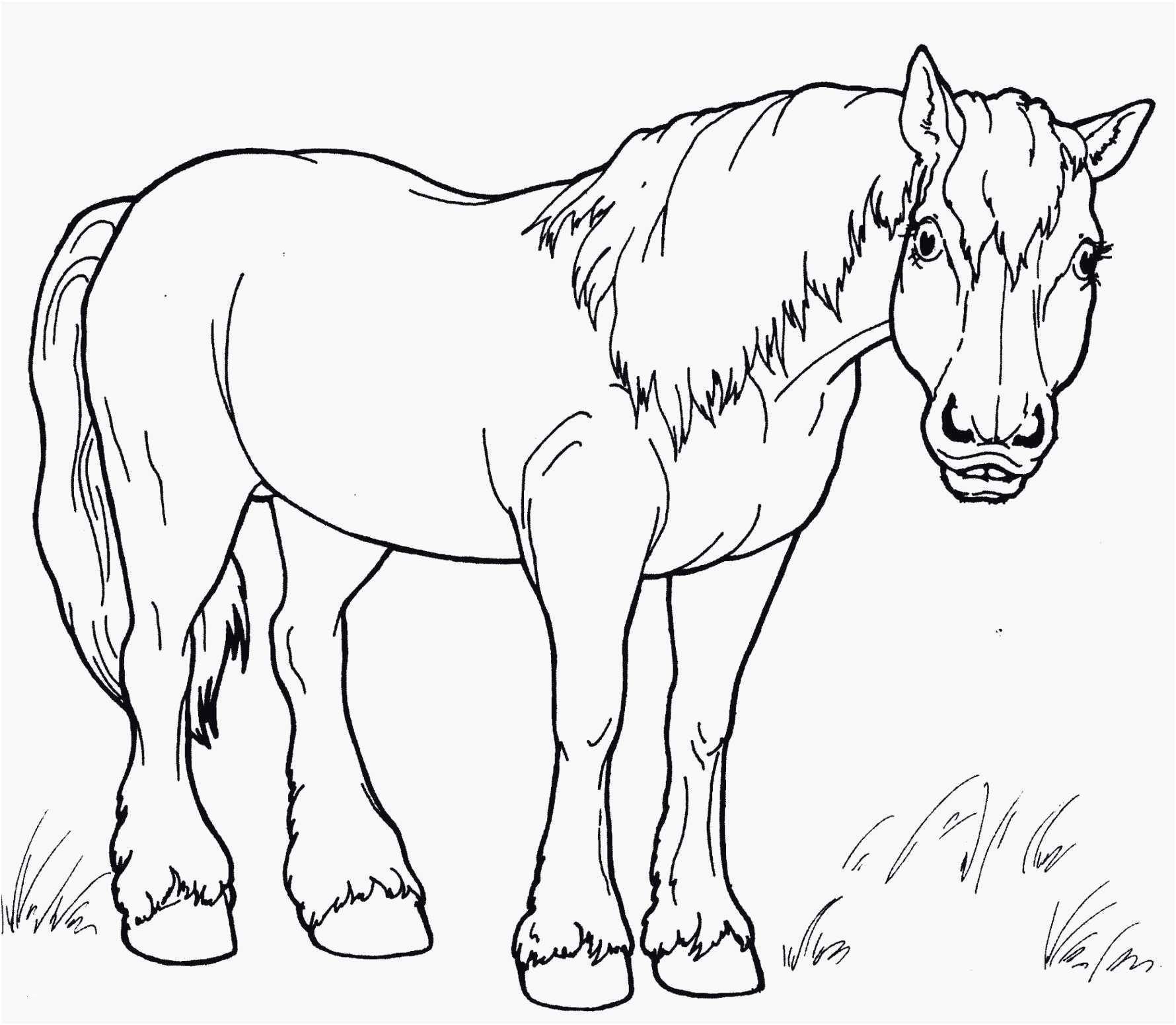 Пин на доске unicorn coloring page