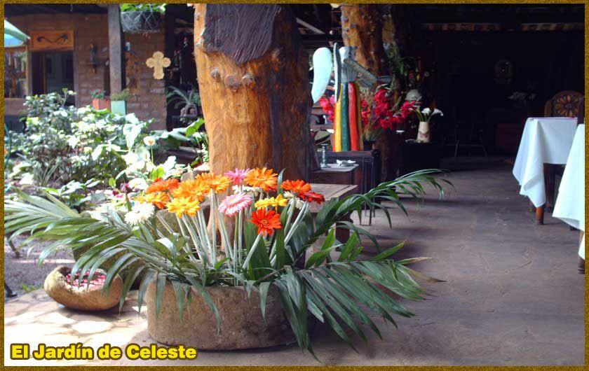 El Jardín de Celeste  un lugar para disfrutaruna rica comida y un ambiente tranquilo