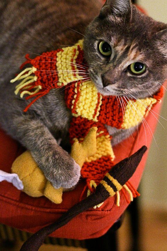 Harry Potter Inspired Catnip Toys And Cat Costume Playset 7 Piece Gattini Animali Simpatici Animali
