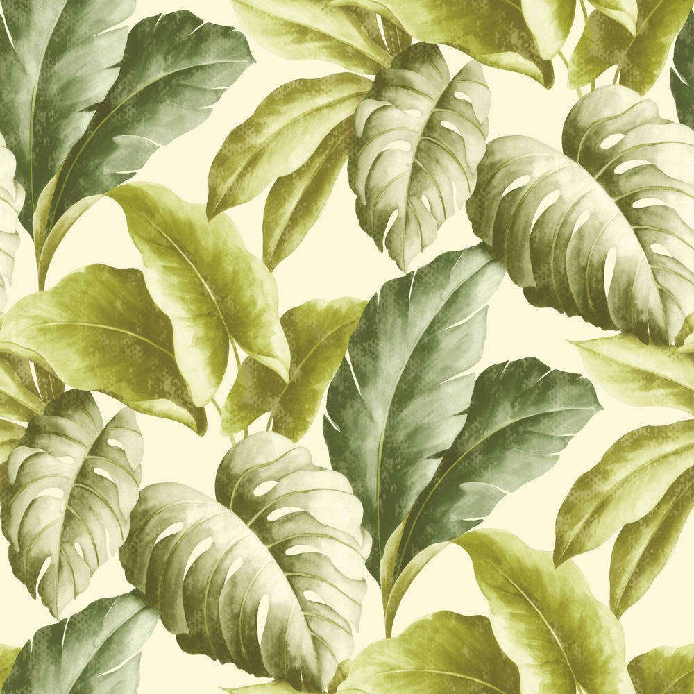 Deco4walls Botanical, Trópusi esőerdők ihlette minták