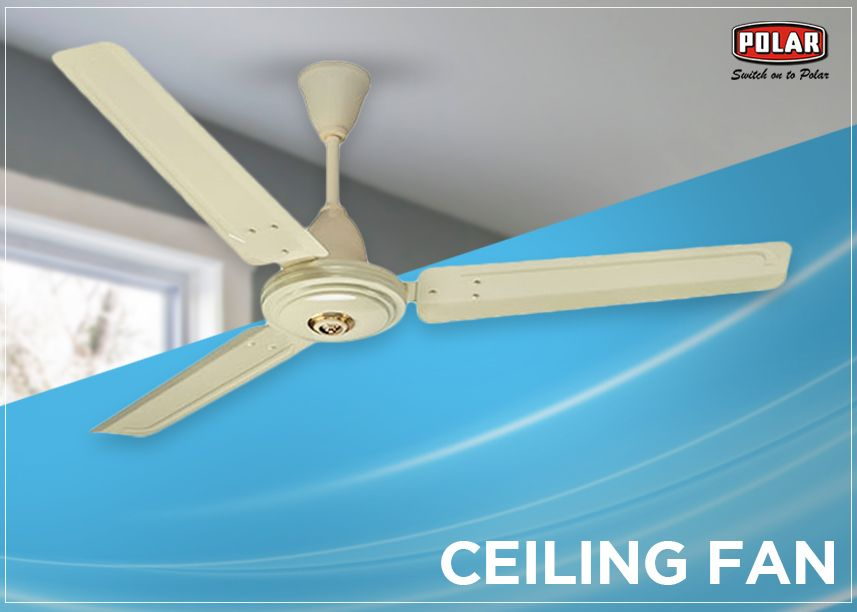 Ceiling Fan Directions During Winter And Summer Ceiling Fan