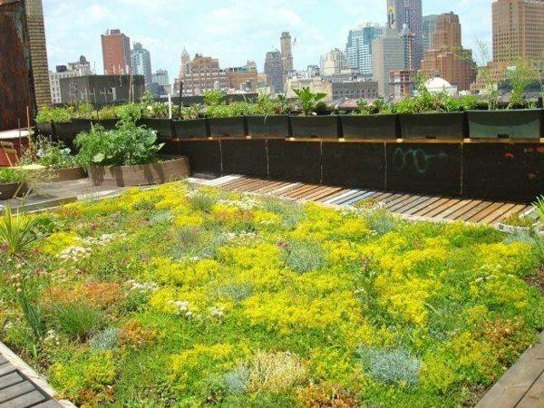 Et Pourquoi Pas Un Jardin Sur Le Toit Amenagement D Espace Vert