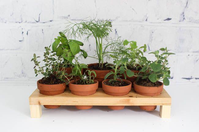 How To Build Your Own Indoor Herb Garden Love Create Celebrate