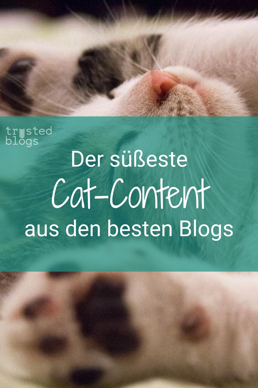 Lass Dich von über 100 Beiträgen unserer Blogger gut