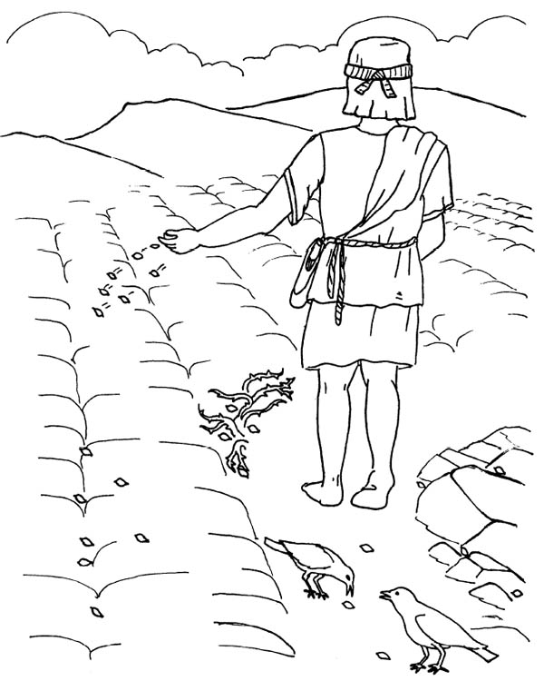Good Ground Where Seed Was Scattered In Parable Of The Sower Coloring Page Color Luna Coloring Pages Coloring Pages For Teenagers Fall Coloring Pages