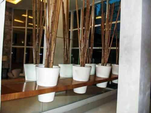 Du bambou déco pour un intérieur original et moderne à découvrir ...