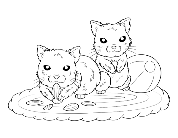 Free Printable Hamster Coloring Page Download It At Https Museprintables Com Download Coloring Page Hamster Coloring Pages Hamster Color