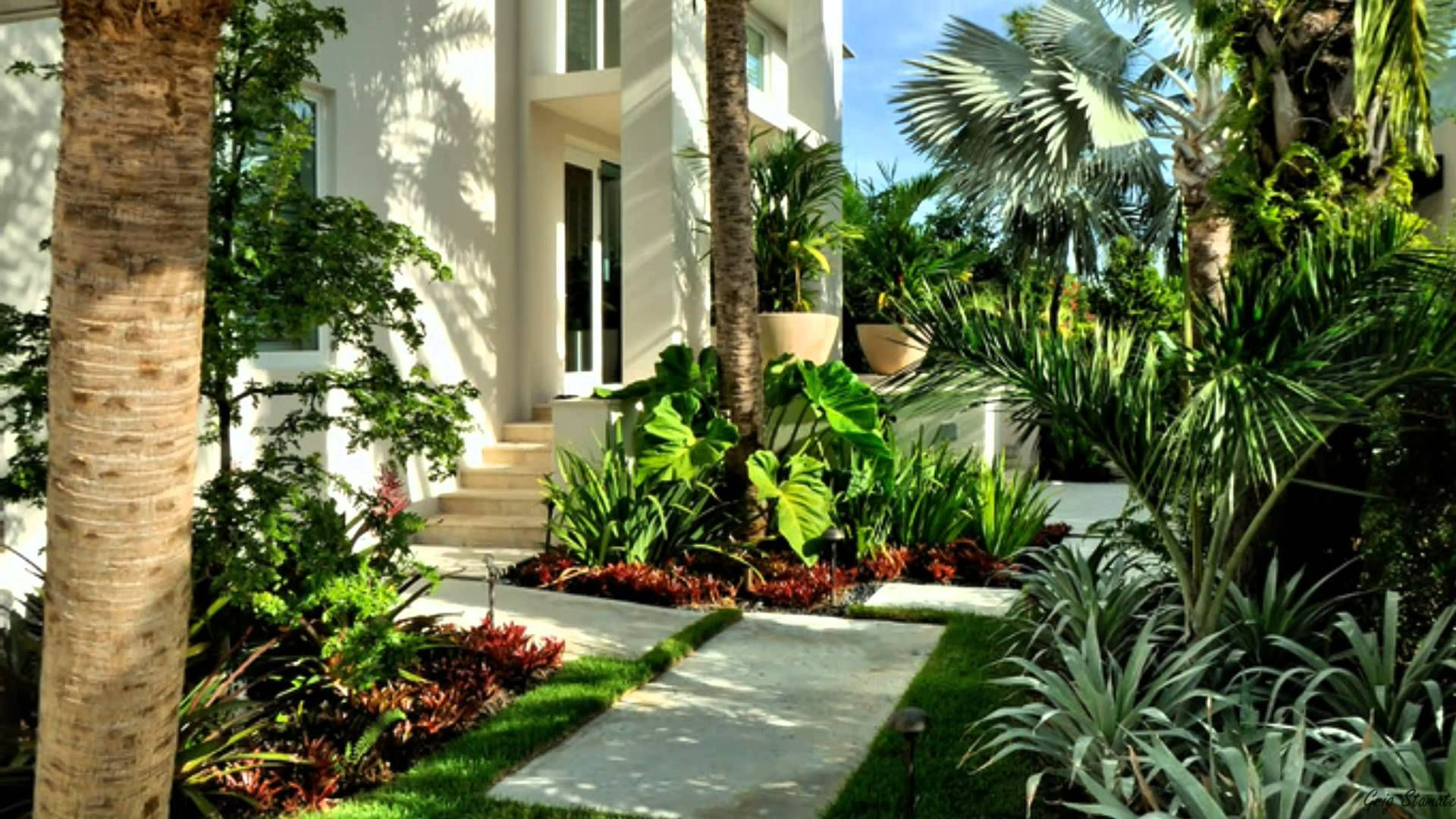 Beautiful Gardens with Tropical Plants | My Dream Down Slope ...
