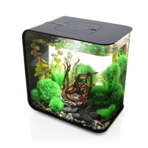 Cool Small Fish Tank Kid S Room Aquarium Freshwater Aquarium