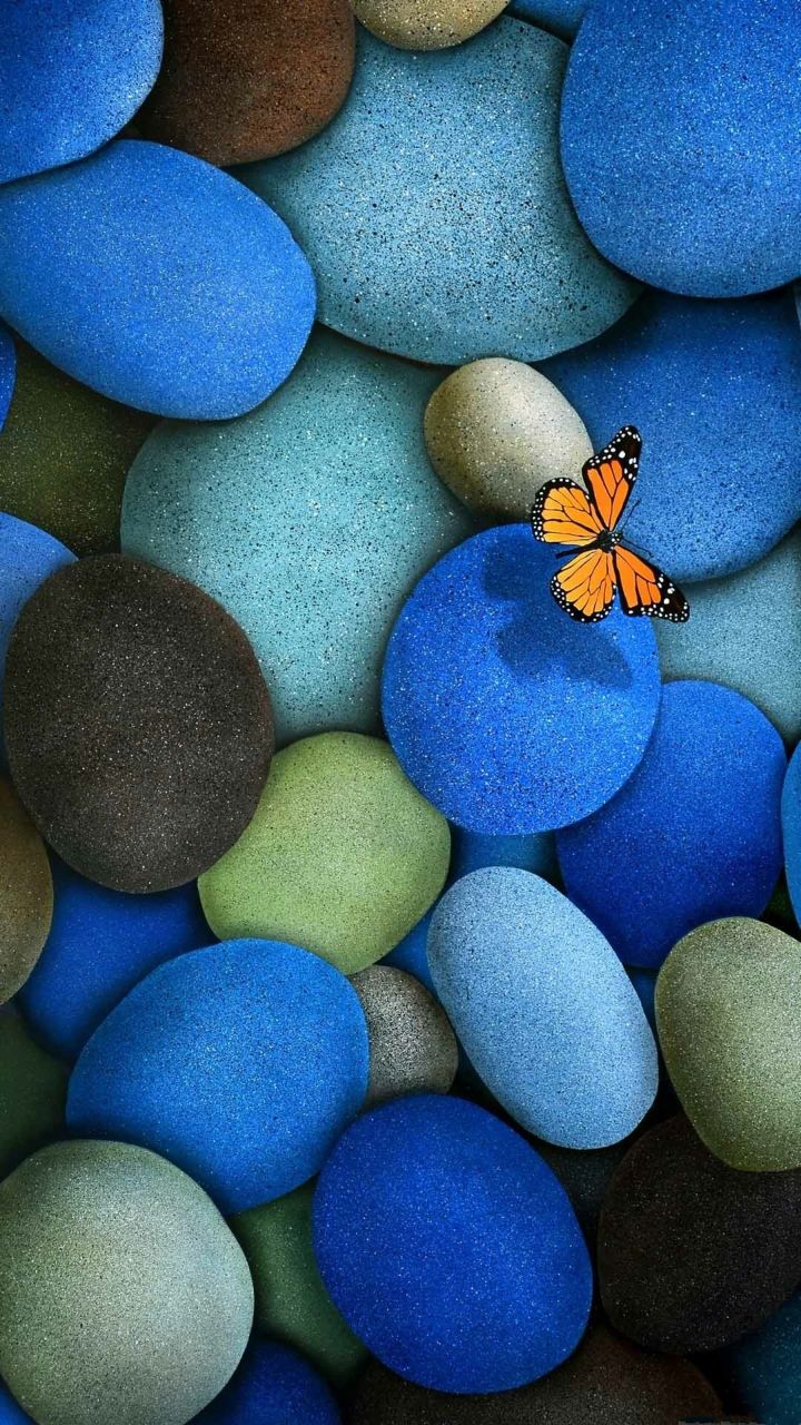 Butterfly and beautiful blue stones. Zen background