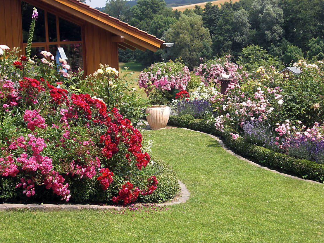 Blumenbeet anlegen: 6 wertvolle Tipps #blumenbeetanlegen