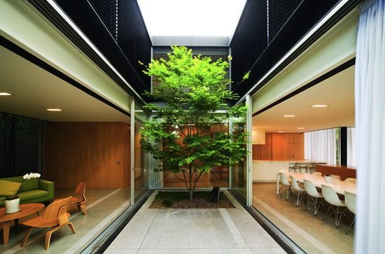 Inner courtyard inspired by traditional chinese courtyard Homes with inner courtyards