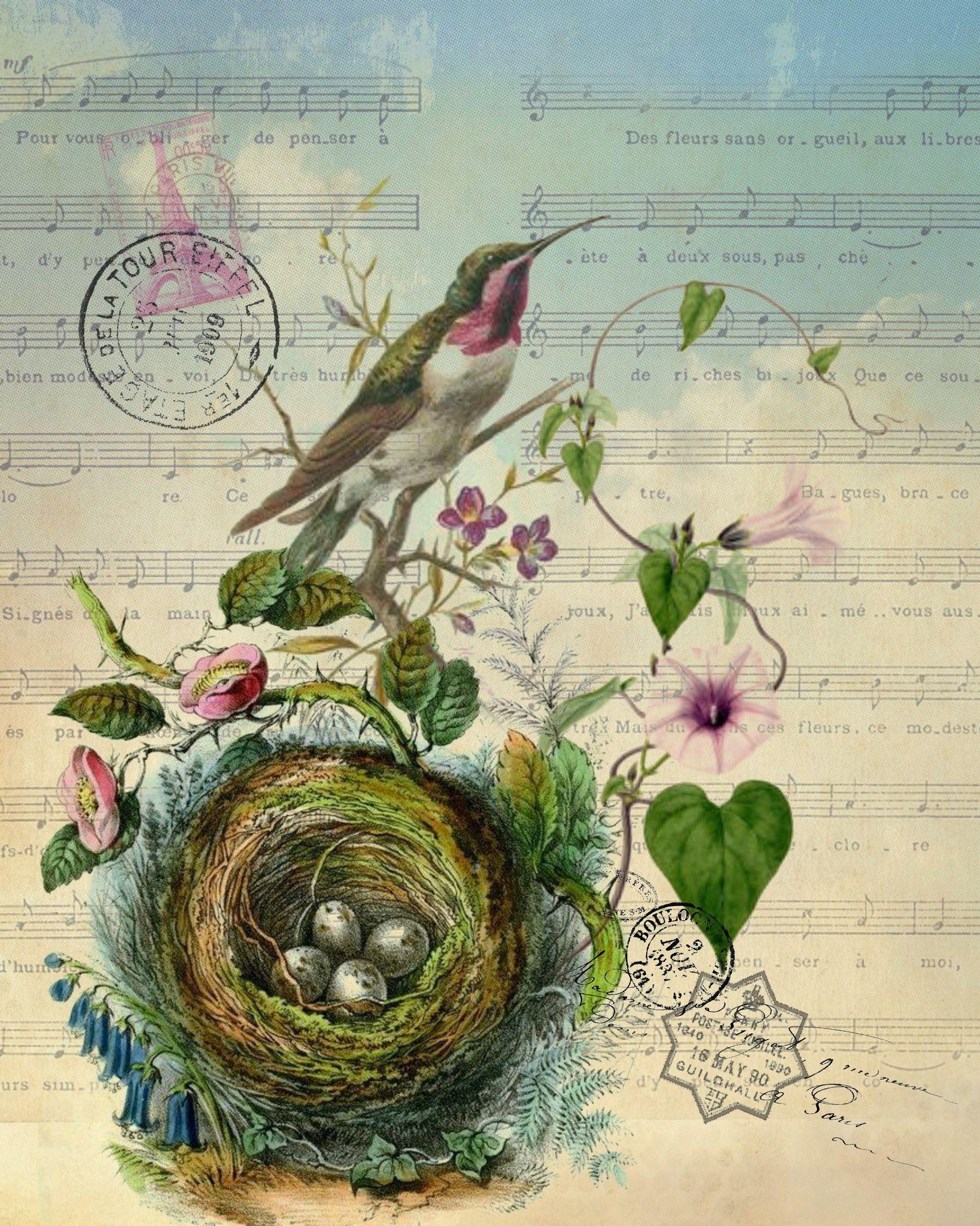 Botanical Hummingbird With Nest Print Pillow Note Cards