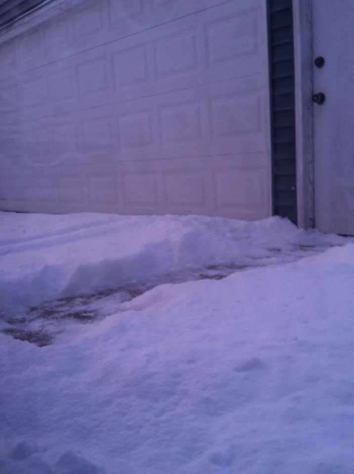 Glad the car is in the garage