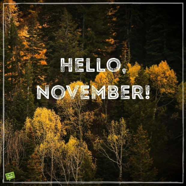 Hello November on image with nature autumn wallpaper. #hellonovemberwallpaper Hello November on image with nature autumn wallpaper. #hellonovemberwallpaper Hello November on image with nature autumn wallpaper. #hellonovemberwallpaper Hello November on image with nature autumn wallpaper. #hellonovembermonth