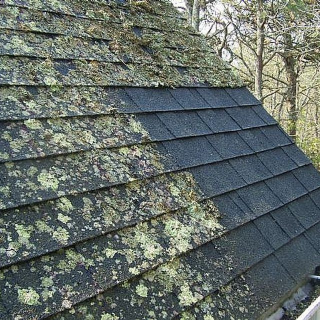 Moss Infected Roof With A Section Cleaned Off Cleaning Hacks House Cleaning Tips Cleaning Painted Walls