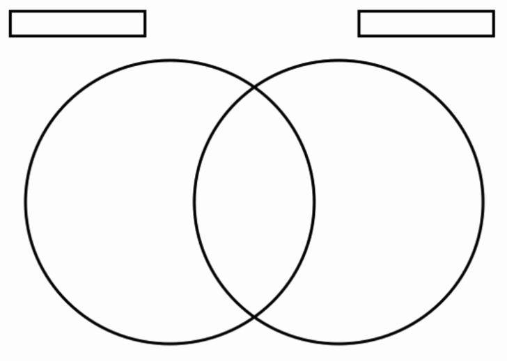 30 Printable Venn Diagram with Lines in 2020 | Venn ...