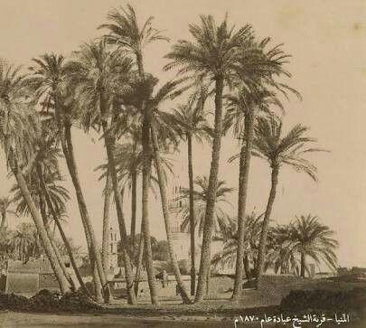 هنا ولدت السيدة مارية القبطية زوجة سيدنا محمد قرية الشيخ عبادة ملوي المنيا Oriental Art Egypt Ancient Egypt