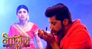 Colors Archives - zvide Watch All Serials Zee Tv Colors Tv Star Plus