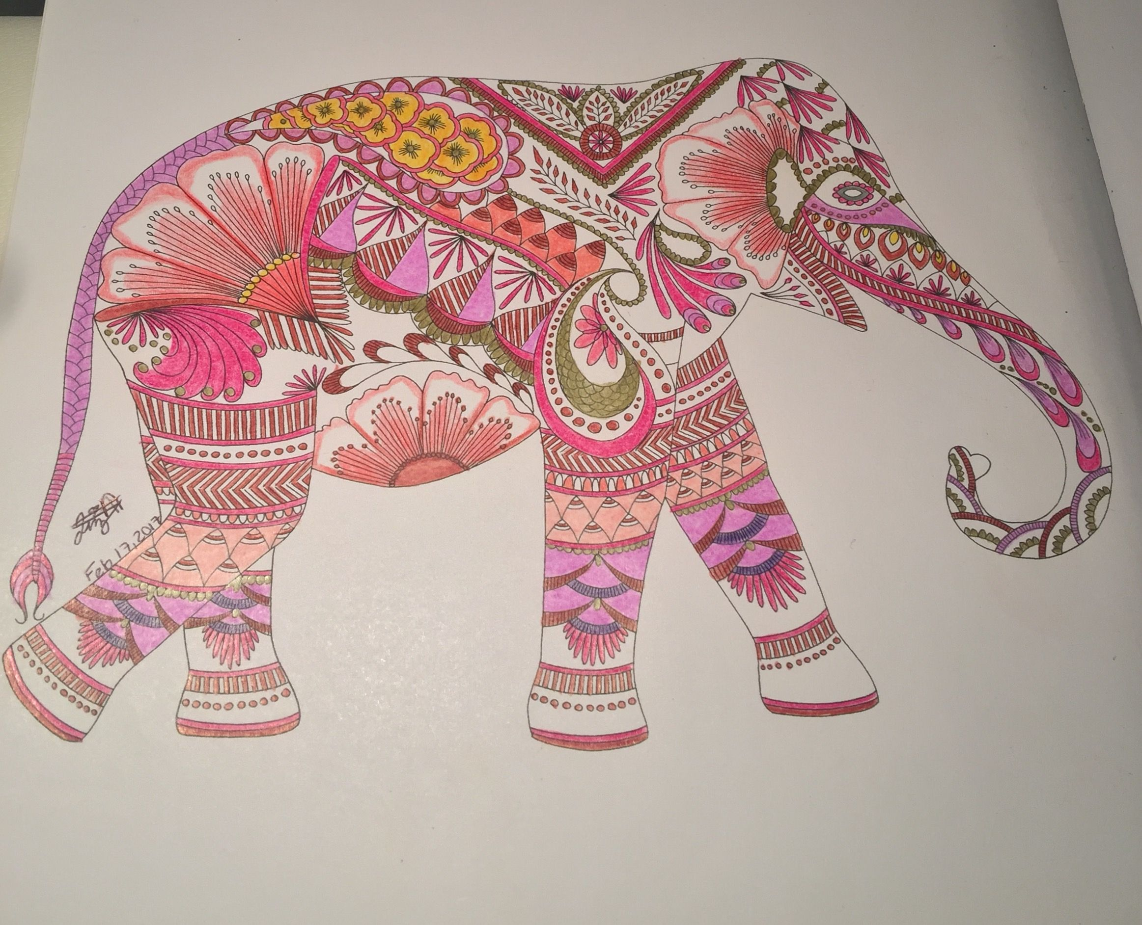 Color me draw me animal kingdom book - Animal Kingdom Millie Marotta Birds Color Me Draw Elephants Elephant