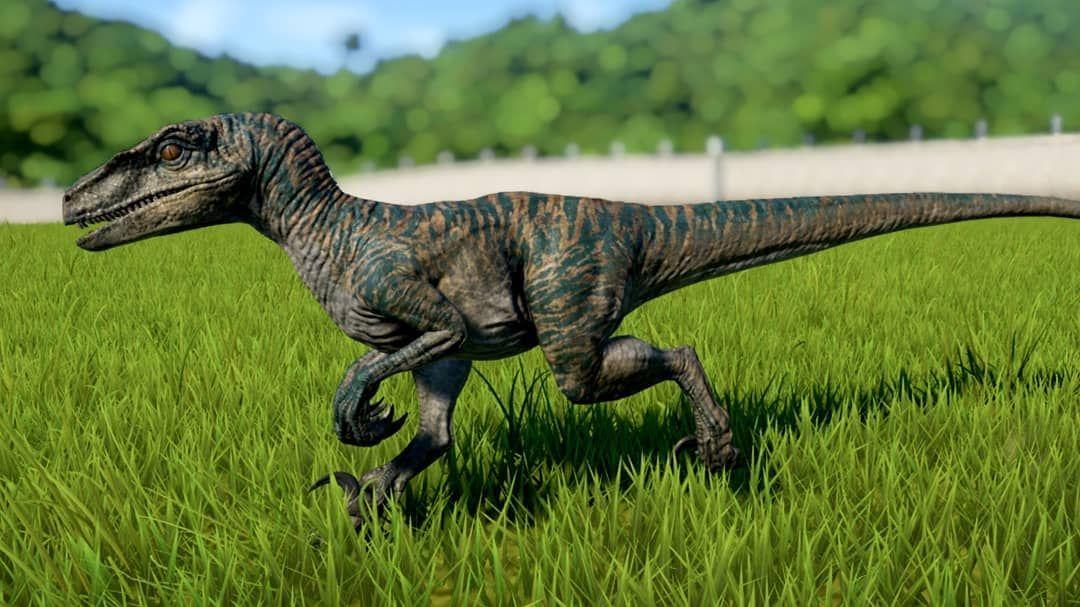 Pin by Alan Grant on Jurassic in 2020 Velociraptor