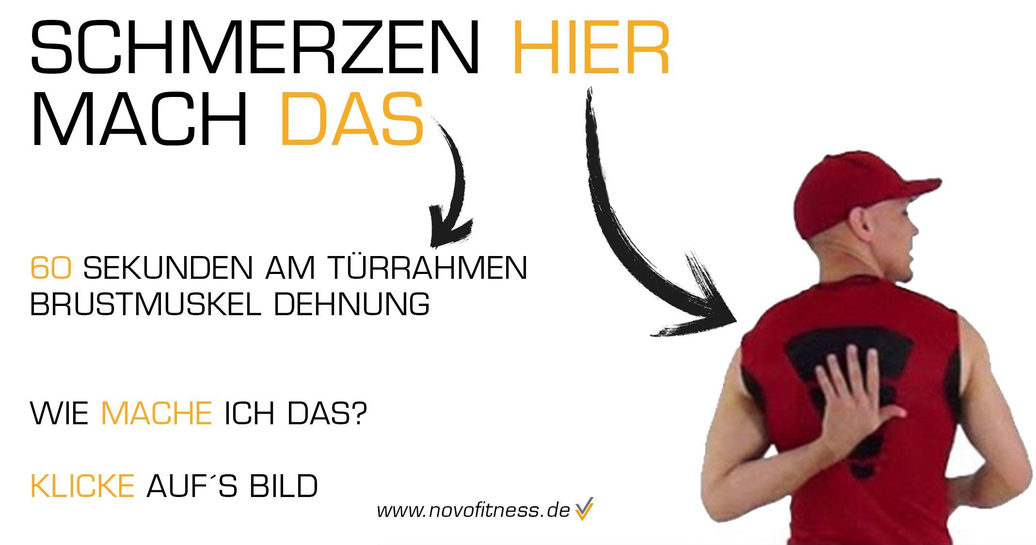 Atemberaubend Muskeln Des Oberen Rückens Zeitgenössisch - Anatomie ...