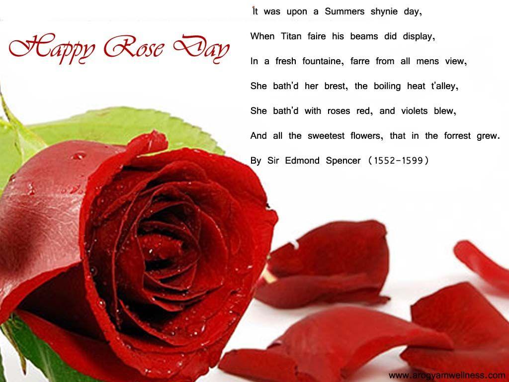 Rose Day 2015 Rose Day Wallpaper Happy Rose Day Wallpaper Rose