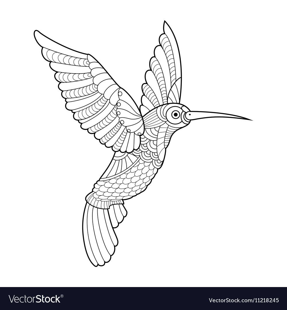 990 Hummingbird Coloring Book Free Hummingbird Colors Coloring Books Bird Coloring Pages