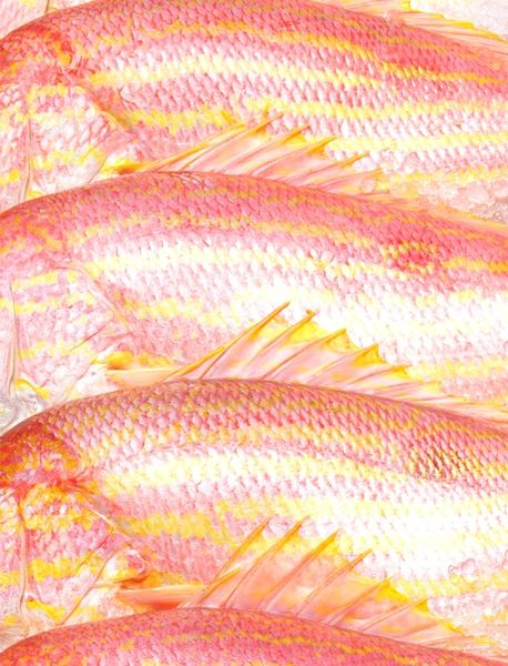 pink fish scales.