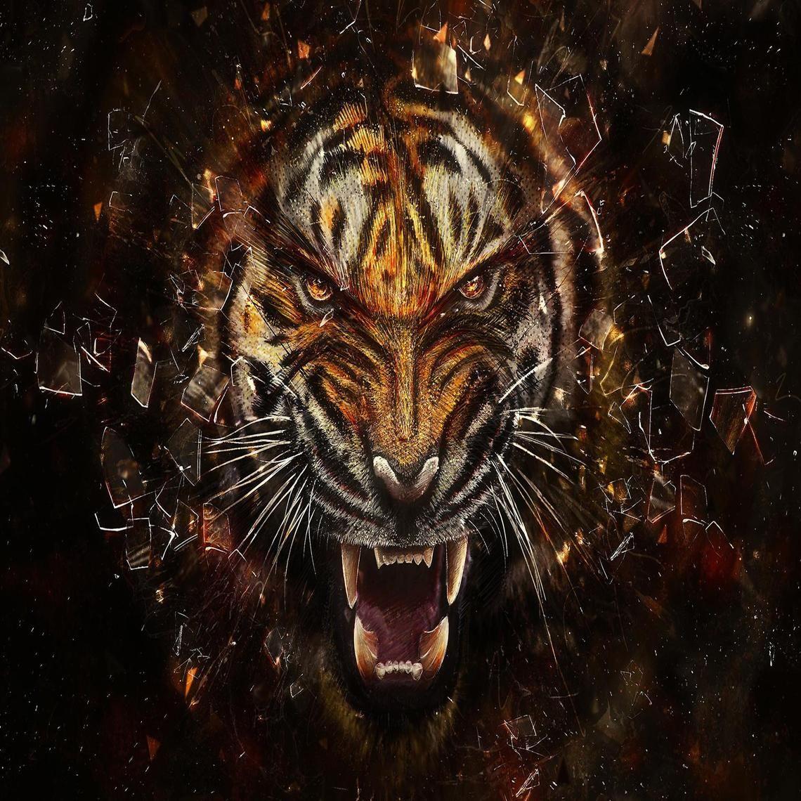 Angry Tiger Artwork Tiger Art Work Tiger Artwork Tiger