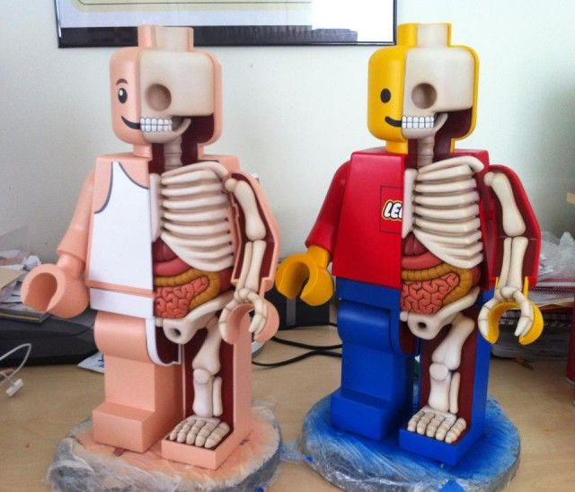 Jason Freenys Giant Dissected Lego Men  The kids would like this: @Venessa Sylvester