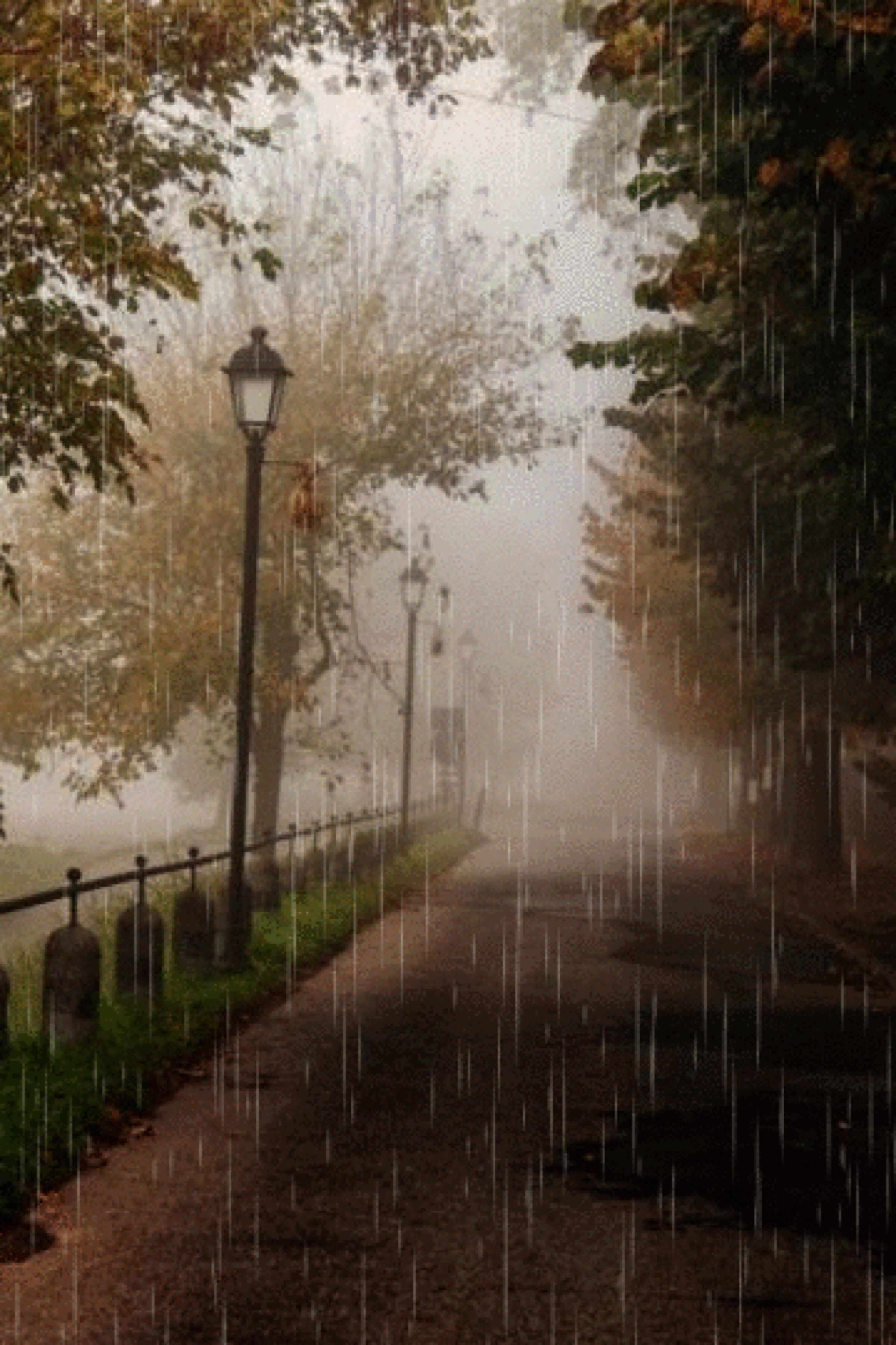 Paiajes Lluvia Rain Photography Love Rain Beautiful Nature