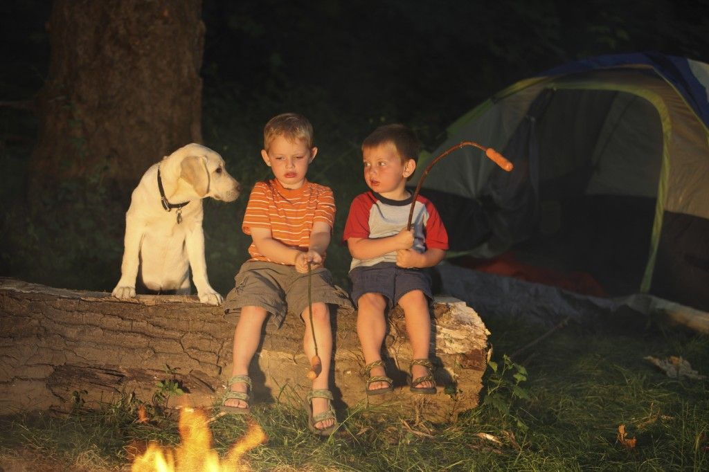 Tips For Camping and Hiking With Kids
