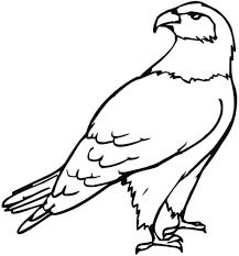 Resultado De Imagen De Dibujos De Aguilas Para Niños