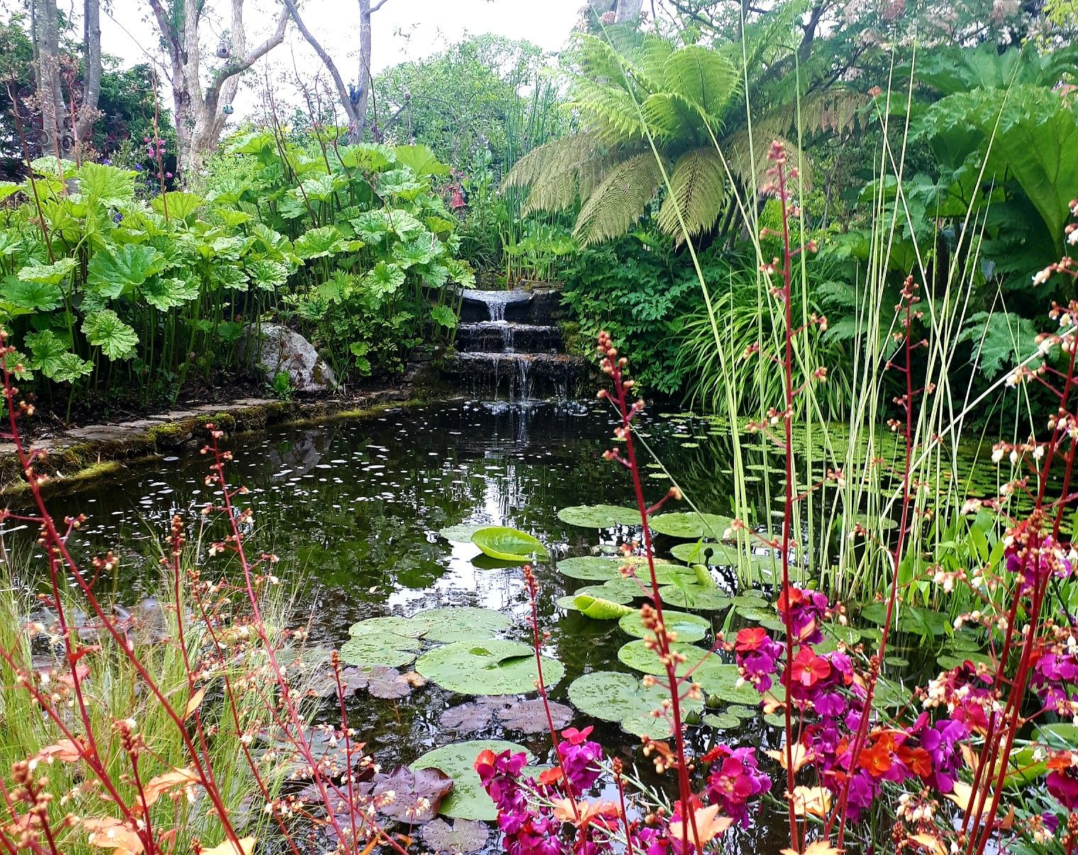 Terra Nova Gardens Co Limerick Ireland (With images ...