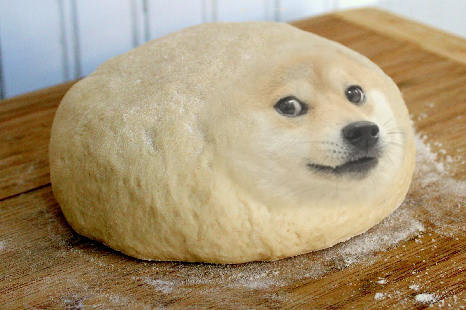 Roblox Doge - Year of Clean Water
